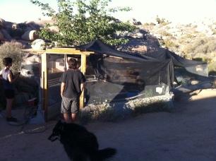 Aaron & Ronda's fortress garden